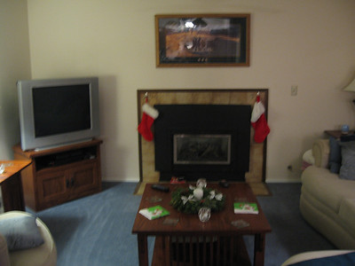 2010 Feb Fireplace redo