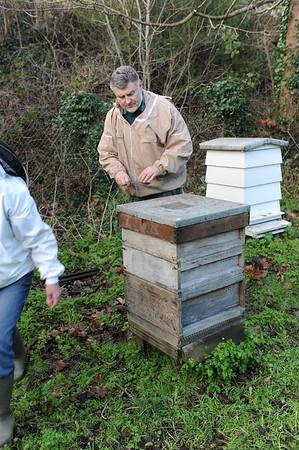 2014 Oxalic Acid Bees Dec