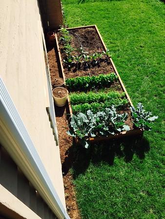 2015-05-10 Gardening fun