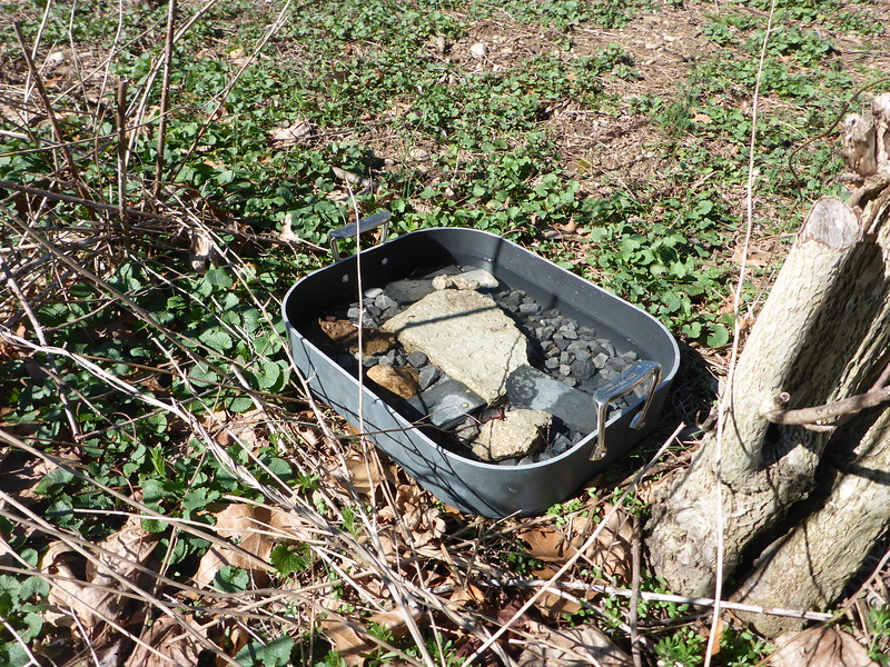 Water supply for bees.  Stones prevent bee drowning