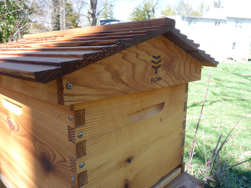 The brood box (lower half of the hive).  The queen raises new bees in the brood box.  The honey super (second story of the hive) will be added later after the brood gets established.