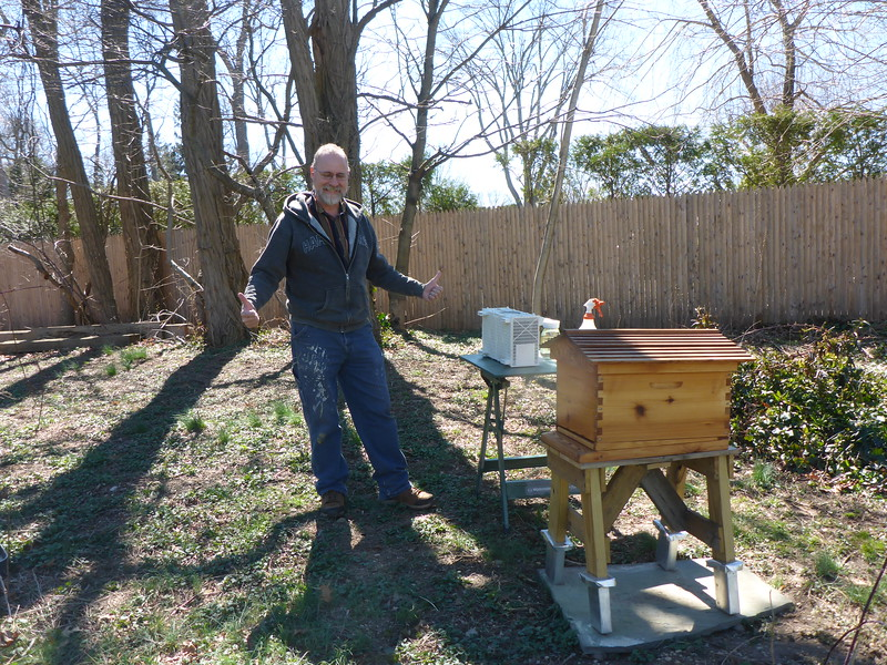 Getting set to put the bees in the hive