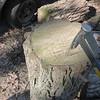 Freddy's tic-tac-toe with an axe on a log