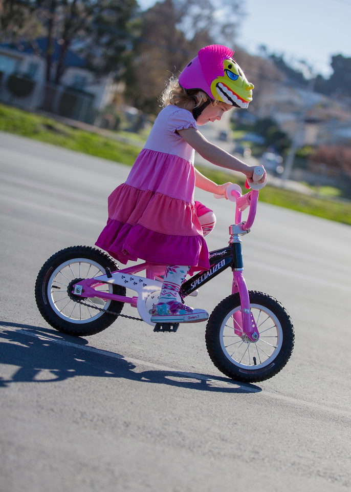 Day 365/1095 - I'm so very proud of my big girl.  She hardly skipped a beat moving from her scoot bike to a regular bike with no training wheels.  Santa did a good job this year bringing the pink bike.