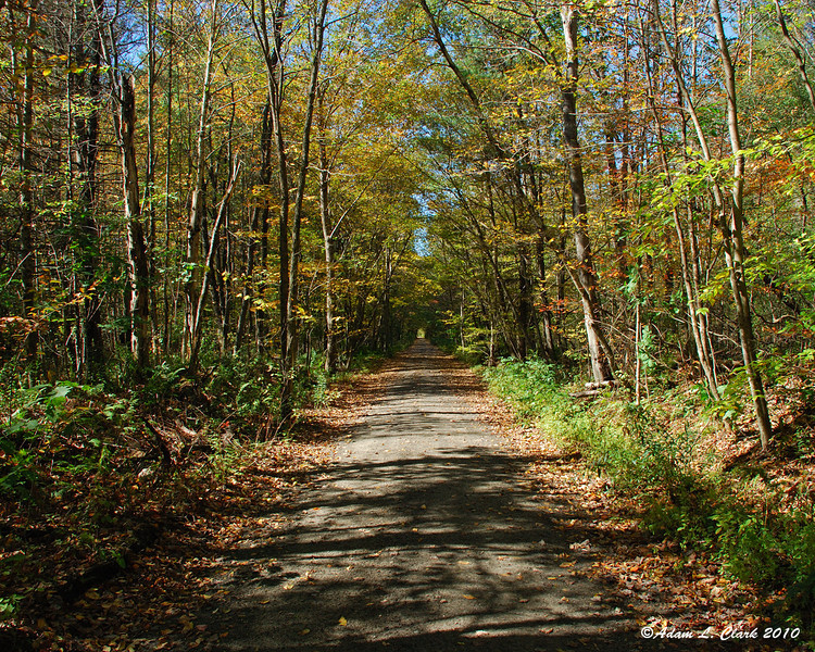 Looking down a straight section of the rail trail