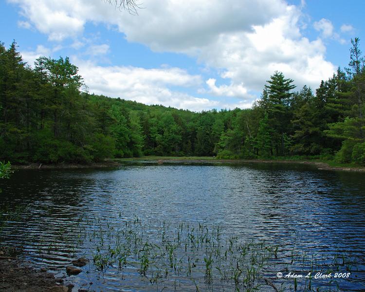 Fullam Pond