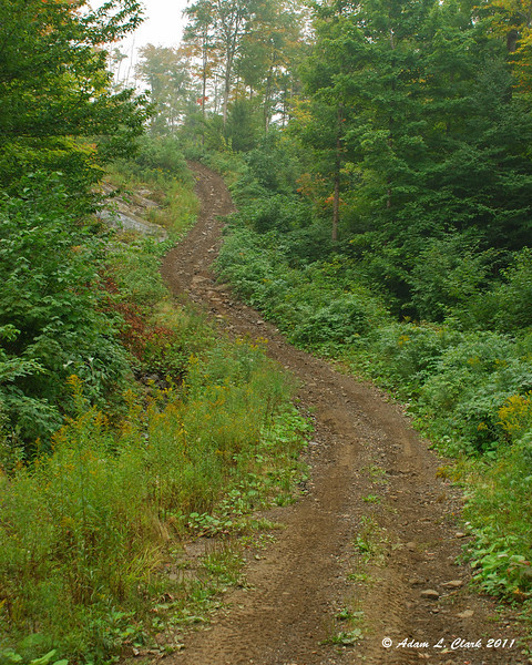 One of the steep hills on Shatney Mountain.  It seems much steeper in person