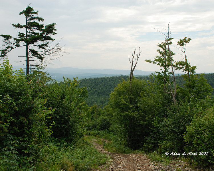 Looking West down the trail from the top of Cowen Hill.
