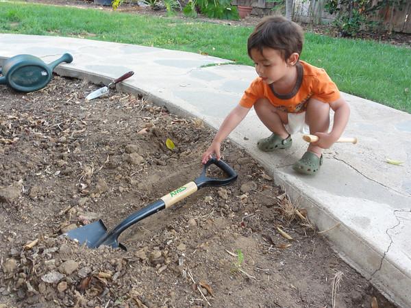 Arthur Digging Dirt