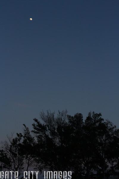 IMG_0686 Moon rising dpp