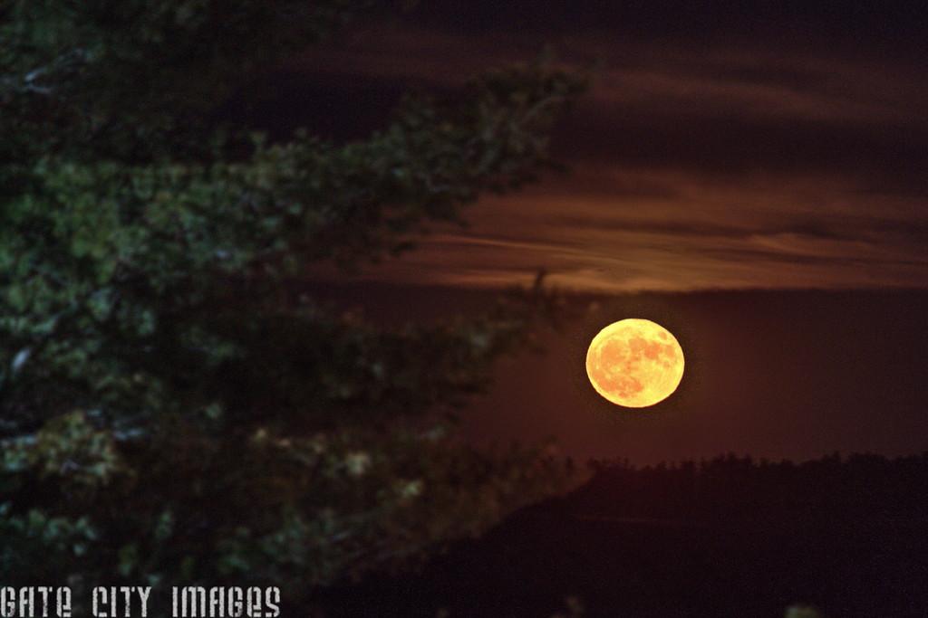 IMG_8270_1_2_tonemapped super moon rising trm