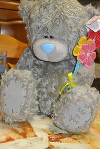 2014-02-14 Bear 'Jinan'