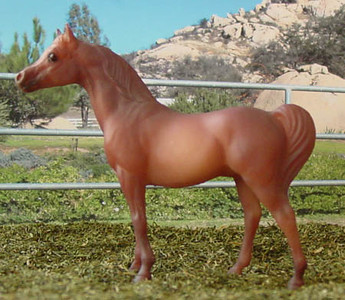 G1 SM Arabian Stallion 59974