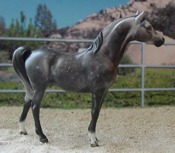CM G1 Arabian Stallion by Josine Vingerling 2002