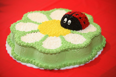 Madison's Lady bug cake. - vanilla cake, buttercream frosting - aka death cake for her (then) unknown allergies.