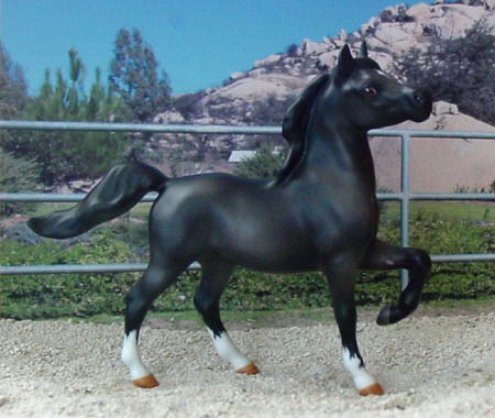 HR Mini Prancing Arabian painted by Dee Whitley