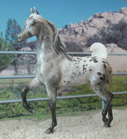 Chaney Arabian Stallion with Flipped Tail CMG China by Animal Artistry