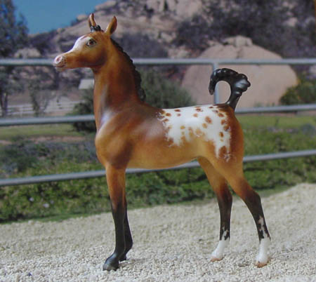 Chaney Arabian Foal CMG by AA