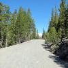 Saddle Lake Hike