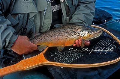 Duck Lake/ Blackfeet Nation