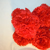 5 small red carnation pomanders. Small Pomanders, $2 each