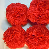 4 medium red carnation pomanders. Medium Pomanders, $3 each