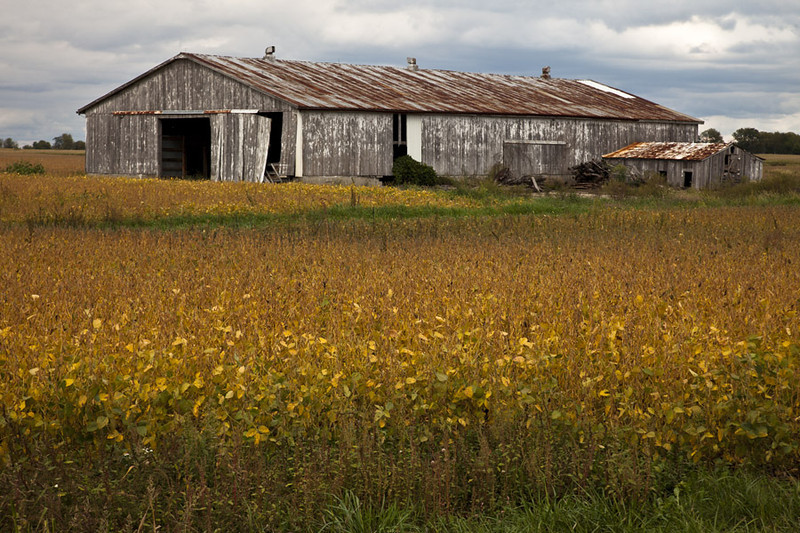 Original Photo of a barn on east side of I74 in Indiana, near mile 22.