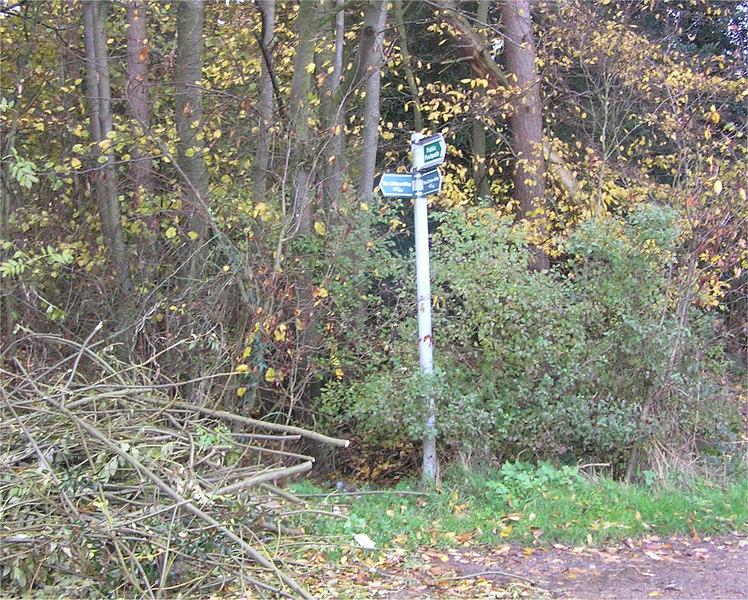 C0015_Nov22_2006_post_TL0666513685
