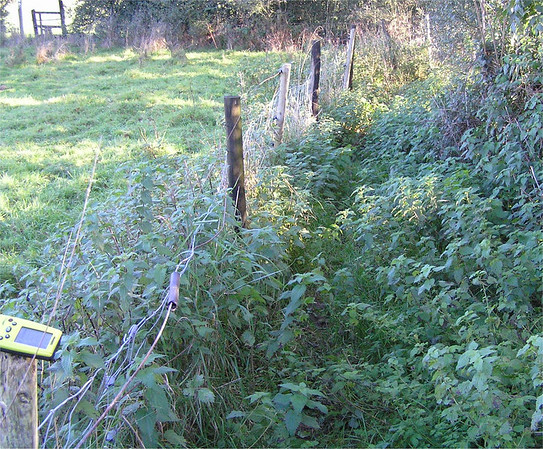 Footpath Monitoring - Issues logged