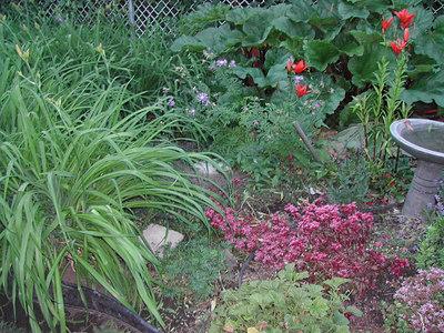 Yard 2007