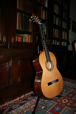 Building a Guitar