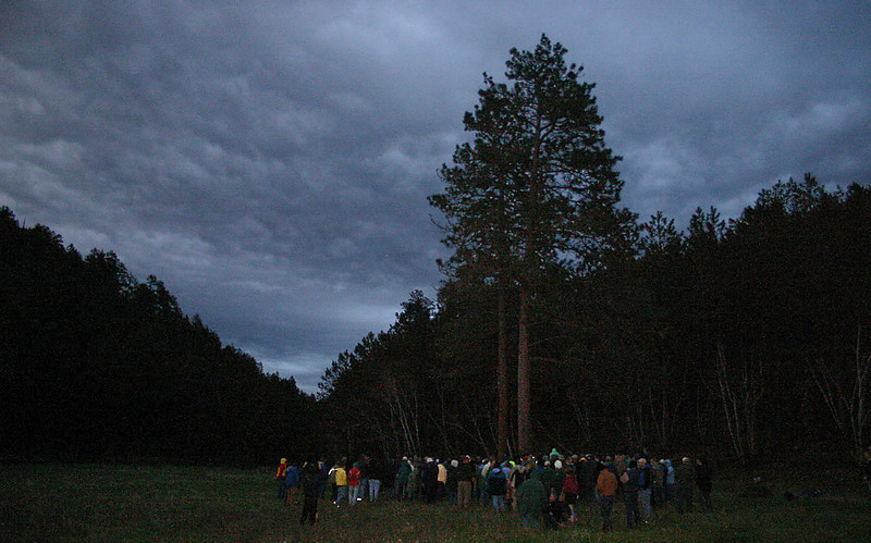 """A wider view of the open area where we spent much of the evening.  Hopefully, we'll enjoy similar weather on future outings.  The next Moon Walk is Saturday, June 26, <b><i> Forest Wildflowers</i></b>.  Forest botanists will introduce visitors to the habitat, identification, and management of a variety of wildflowers -- and possibly some rare plans of the Black Hills.  Make plans to join us!  If you'd like to revisit Moon Walks from last year, go to our <a href=""""http://www.photographs.galeymiller.org/Hobbies/Hiking/Moon-Walks/8223765_VRCJa""""> 2009 Moon Walk Gallery</a>.  Or return to <a href=""""http://www.blackhillshistory.com""""> Black Hills Journal</a>."""