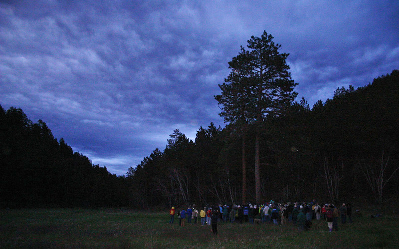 Participants gathered near a grove of trees that would eventually lead us up a draw, where we would listen for owl calls.