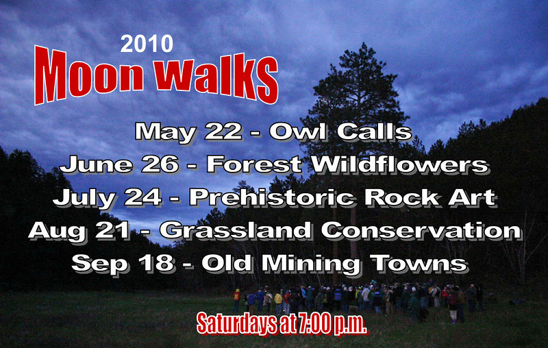 "Black Hills National Forest hosts<i> Moon Walks</i> each month throughout the summer.  This gallery highlights some of the experiences from each of the walks scheduled for the 2010 season.   A reminder that you can click on any image in order to select a larger version.  Just below are photos from our latest <i> Moon Walk</i>.  As you scroll down and change pages, you'll find photos and information from earlier <i>Moon Walks</i> of this year.  To read a bit more about all <i>Moon Walks</i> of 2008, 2009, and 2010,  visit our <b><i> <a href=""http://www.blackhillshistory.com/search/label/Moon%20Walks"">Black Hills Journal</i></b></a> site."