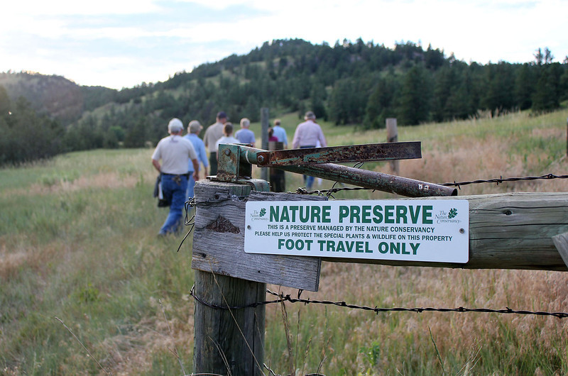 The Whitney Preserve is managed by the Nature Conservancy, which species foot traffic only on the nature trail.