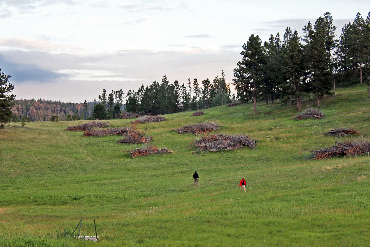A few stray Moon Walkers exploring the area around the Miller Cabin.  Notice the slag piles on the hillside.