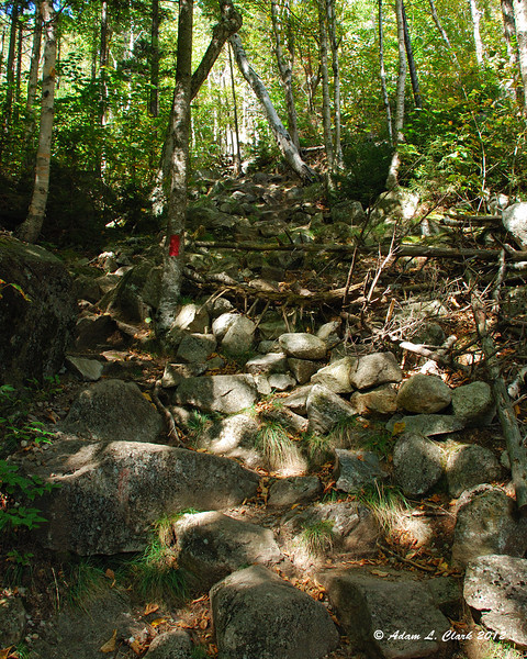 Rocky section of trail at the bottom of the steepest part