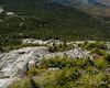 Looking down the open rock of the East Peak