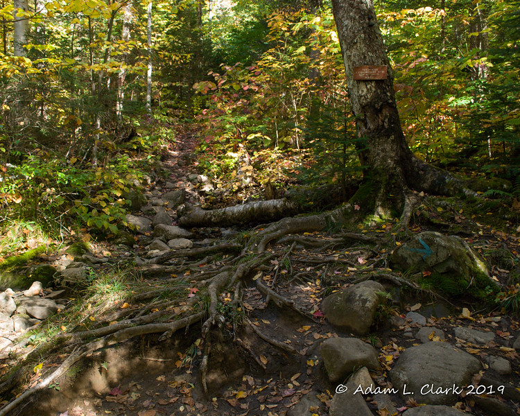 At the upper junction with the Table Rock Trail