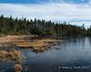 Skylight Pond