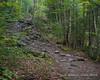 A short climb in the trail