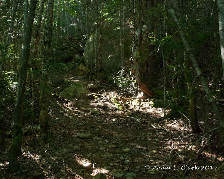 After crossing Doubletop Brook, the trail stays pretty steep and rocky