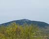 Mt. Monadnock as seen from the summit.  The trees are starting to grow up more since the last time I was here it seems
