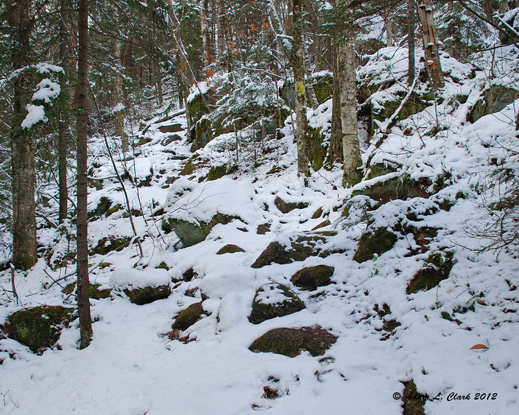 After passing some large glacial erratic boulders, the trail works along the side hill for a bit