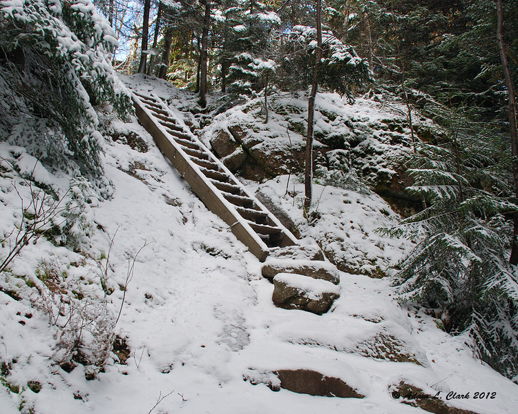 A nice ladder just before the summit