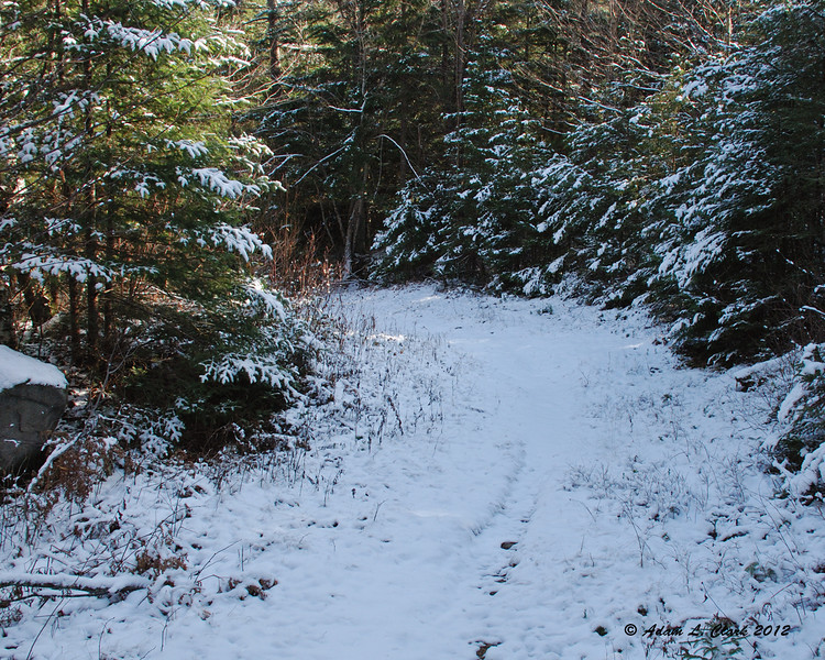 Shortly after crossing the snowmobile trail, you loop back to it and follow if for a short stretch