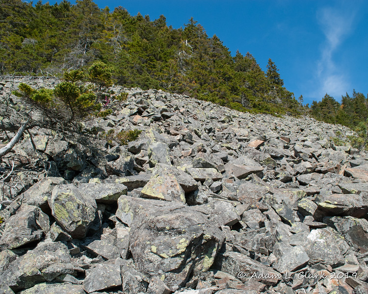 The talus field along the bushwhack.  The path hikes up this to the trees and enters back in.  It doesn't follow the rocks very far, which probably isn't a bad thing as they aren't very stable and you really have to pay attention to your footing