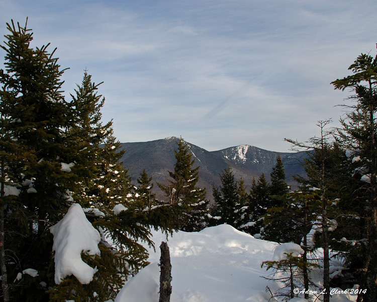 The open area on the eastern side of the summit is spotted with trees