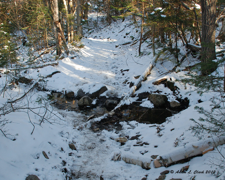 A very small brook running across the the trail
