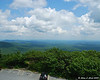 View North East from the fire tower at the summit.